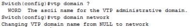 vtp domain