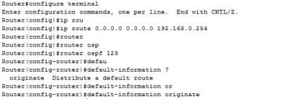 default-information originate command