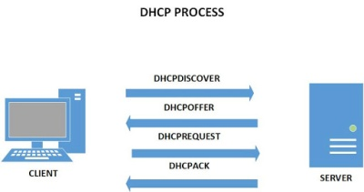 DHCP process