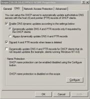 DHCP properties