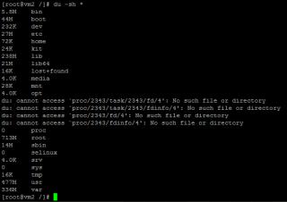 Linux du command
