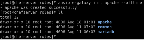 ansible-galaxy command